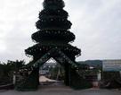 Chiêm ngưỡng cây thông Noel cao bằng tòa nhà 10 tầng
