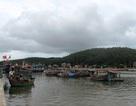 Huy động tàu thuyền tránh bão Kai Tak