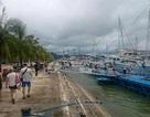 Quảng Ninh: Cấp phép trở lại cho tàu tham quan Vịnh Hạ Long