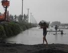 Quảng Ninh: Người dân đua nhau đi vớt than sau trận lũ quét