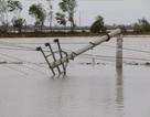 Công điện của Thủ tướng Chính phủ về khắc phục hậu quả bão số 1