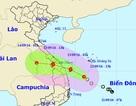 Tối nay áp thấp nhiệt đới mạnh lên thành bão, Đà Nẵng họp khẩn