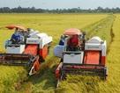 Khoa học và Công nghệ là khâu đột phá trong tái cơ cấu nông nghiệp