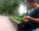 Trọn gói đẻ thuê giá 350 triệu đồng tại Hà Nội