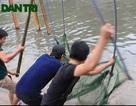 Người Hà Nội hăm hở mang màn đi... bắt cá