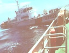 Video: Tàu Trung Quốc hung hãn đâm rách tàu kiểm ngư Việt Nam