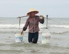 Chuyện người phụ nữ gánh nước biển đi bán