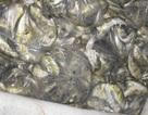 Xử lý hơn 700 cơ sở vi phạm vệ sinh an toàn thực phẩm