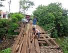 Đắc Lắk: Dân sợ hãi đi trên cây cầu mục ruỗng sắp sập