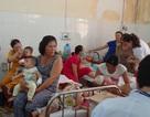 Đắk Lắk: Phát hiện hơn 30 ổ dịch sốt xuất huyết