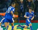 Leicester City thăng hoa: Hãy cứ bay cao chú chim nhỏ!