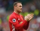 """Wayne Rooney: """"Tôi biết vì sao mình phải dự bị"""""""