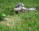 Ô tô khách hung hãn húc xe CSGT bay xuống ruộng sau nhiều giờ bị truy đuổi