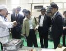 Nhà đầu tư Nhật đang kiếm lời ở mọi lĩnh vực tại Việt Nam