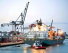 FTA Việt Nam – EU: Sức ép lớn nhất là cải cách khu vực công!