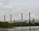 Sau Formosa  đến lượt Vedan xin tự nhập than để phát điện