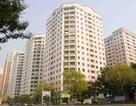 Hà Nội: Sẽ kiểm tra và xử lý việc sử dụng chung cư làm văn phòng kinh doanh