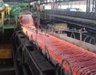 """Giữa """"bão"""" quy hoạch ngành thép, thép Trung Quốc giá rẻ ồ ạt vào Việt Nam"""