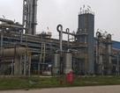 Đạm Ninh Bình sản xuất trở lại để bù lỗ nghìn tỷ cho nhà máy