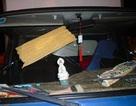 TPHCM: Ô tô liên tục bị ném đá vỡ kính trên cao tốc
