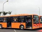 Xe buýt chất lượng cao đi sân bay Nội Bài giá 30.000 đồng/lượt
