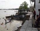 """Việt Nam là 1 trong 4 quốc gia """"chìm"""" sâu nhất thế giới do nước biển dâng"""