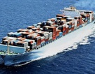 """Thị trường vận tải biển trong """"bão"""" khủng hoảng lớn nhất lịch sử!"""