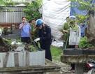 Bị can thứ 3 mua dao cho kẻ chủ mưu trong vụ thảm sát Bình Phước