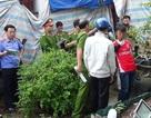 Vụ thảm sát 6 người ở Bình Phước: Dương và Tiến đối mặt với án tử hình