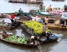 Tuần lễ Du lịch Xanh ĐBSCL kêu gọi đầu tư được 62 dự án