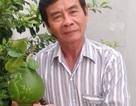 """Chuyện về người đàn ông """"đóng dấu"""" bản đồ Việt Nam lên trái cây"""