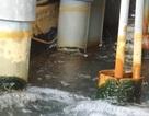 Cần Thơ: Dân bức xúc vì trả tiền nước sạch, sử dụng nước bẩn!