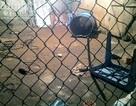 Hà Nội: Thùng phuy phát nổ, bé trai 13 tuổi tử vong