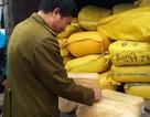 Hà Nội: Phát hiện 3 tấn ruốc nghi làm từ sắn dây
