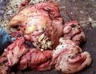Hà Nội: Kinh hoàng cơ sở chế biến mỡ bẩn, đầy ruồi nhặng