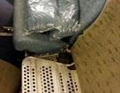 Nữ tiếp viên hàng không giấu 80 cây vàng dưới ghế máy bay