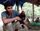 Bỏ nghề tài xế về quê chăn nuôi kiếm hàng chục triệu mỗi tháng