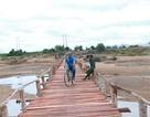 7 hộ dân tự góp gần 300 triệu đồng làm cầu dài 100m