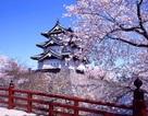 Bộ GD&ĐT tuyển sinh du học Nhật Bản