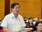 Không cẩn thận Việt Nam sẽ thành bãi phế liệu của thế giới