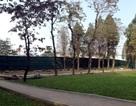 Hà Nội miễn phí vào công viên Thống Nhất, Bách Thảo từ năm 2016