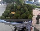 Chợ hoa quả đặc sản khổng lồ trên vỉa hè Hà Nội