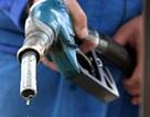 Bộ Tài chính yêu cầu không tăng giá xăng, dầu