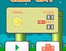Cha đẻ Flappy Bird sẽ bị truy thu khoảng 10 tỷ đồng tiền thuế?