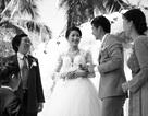 Săn tìm những cặp đôi đại diện cho 13 cột mốc hôn nhân quan trọng
