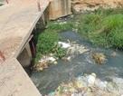 Đồng Nai: Xây cầu trái phép, chặn dòng chảy Suối Chùa