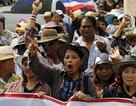 """Thái Lan """"khai tử"""" chính sách trợ giá lúa gạo"""