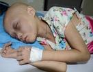 Khát khao cháy bỏng của em bé 8 tuổi bị ung thư máu