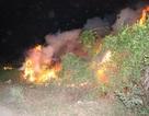 Cháy dữ dội đồng cỏ khô dự án Khu Liên hợp thể thao Rạch Chiếc