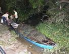 4 người say rượu bị lật ghe trên sông, 1 người mất tích